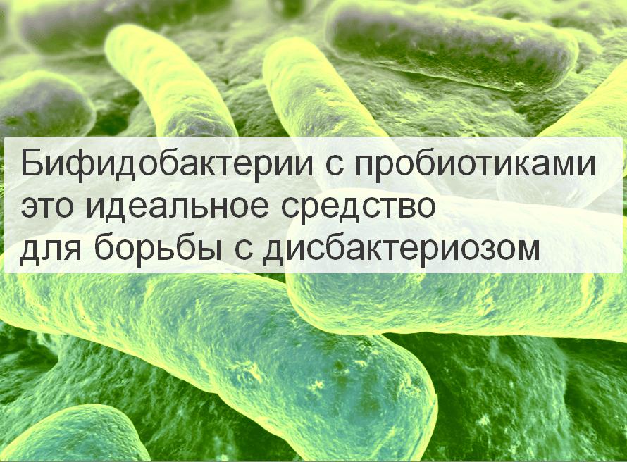 Бифидобактерии с пробиотиками это идеальное средство борьбы с дисбактериозом