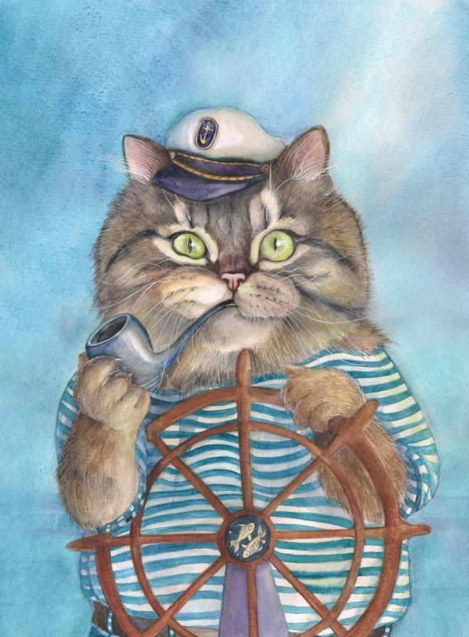 котик морской